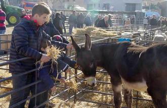 La Fira de Santa Llúcia de Prats dóna pas al Nadal