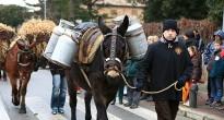 Taradell, l'Esquirol i Roda-Les Masies obren les festes dels Tonis 2014