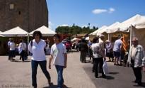 Vés a: La IX Caminada Popular de Pinós segueix la ruta del Castell de Llanera