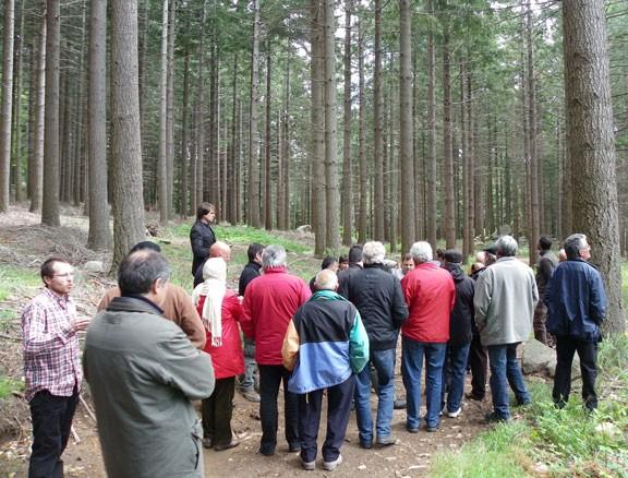 El sector forestal commemora trenta anys d'estudi i experiències