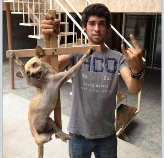 Polèmica per publicar una foto d'un gos crucificat a Facebook