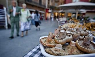 Els primers rovellons al mercat de Vic es venen entre 40 i 50 euros el quilo