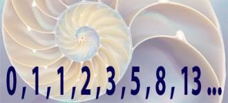 Apunts de fotografia: el nombre d'or - composició matemàtica