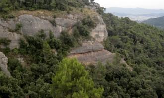 Vés a: L'expansió dels alzinars «ofega» les pinedes de la  península Ibèrica