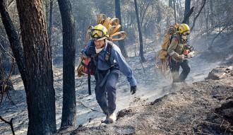 Crema un incendi forestal a la carretera T-713 a la Bisbal de Falset