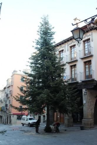 L'arbre de Nadal ja està plantat a la Plaça Major