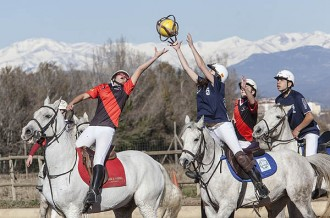 L'espectacle del horseball, a Malla