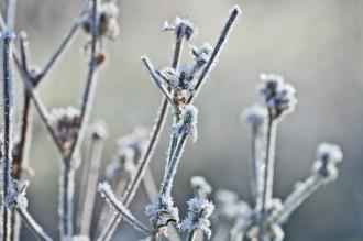 Com afecta el fred a la nostra salut?