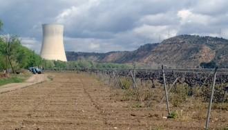 Vés a: Avaluen la preparació de les nuclears d'Ascó i Vandellós per a operar més anys