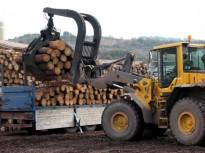 Vés a: Serradores catalanes en peu de guerra per la manca de fusta