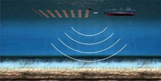 Ecologistes en Acció alerta que les prospeccions de Repsol afecten la pesca