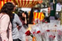 Comparteix a Instagram el teu Sant Jordi amb l'etiqueta #SantJordiND