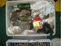 Vés a: El plàstic envaeix mars i oceans