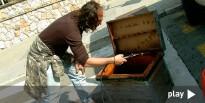 Vés a: Engeguen una campanya per afavorir la presència d'abelles a Tarragona