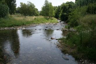 El renaixement del riu La Tordera