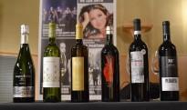 Vés a: Torre del Veguer Llum del Canigó blanc 2011: el vi del Pirineu