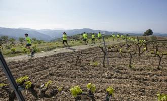La I Marató del Priorat tanca inscripcions amb 400 participants