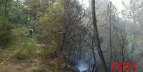 Vés a: Controlen un incendi que crema mitja hectàrea de bosc a Cardona