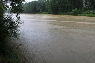 Vés a: Els rius i les rieres d'Osona tenen un estat ecològic saludable