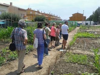 Manlleu mostra el model de gestió dels seus horts municipals