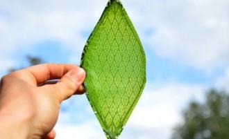 La fulla artificial que genera oxigen