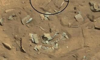 S'ha trobat el fèmur d'un extraterrestre a Mart? [FOTO]