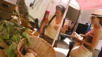Dissabte d'agricultura ecològica i productes naturals a la Ràpita i les Cases d'Alcanar