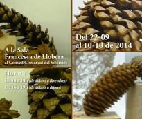 Vés a: Pins i pinyes del món a Solsona, en la conferència MEDPINE