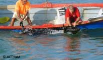 ACTYMA seguix la seua croada contra els bous a la mar a les Cases d'Alcanar