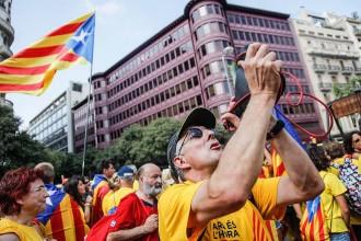 Garrotxins a la Via Catalana 2014