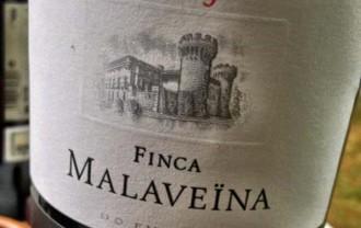 Vés a: Finca Malaveïna i Elyssia Gran Cuvée entre els 100 millors vins del món