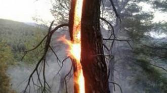 La tempesta deixa un foc de llamp a la Morera del Montsant