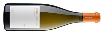 Terroja de Sabaté i Coca 2012: quan és la vinya qui fa el vi