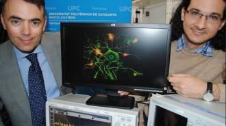 Descobreixen a Terrassa similituds entre el làser i les neurones